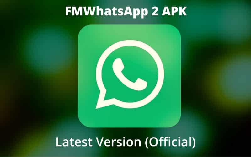Fm Whatsapp 2 New Version Update